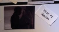 Wren at radley